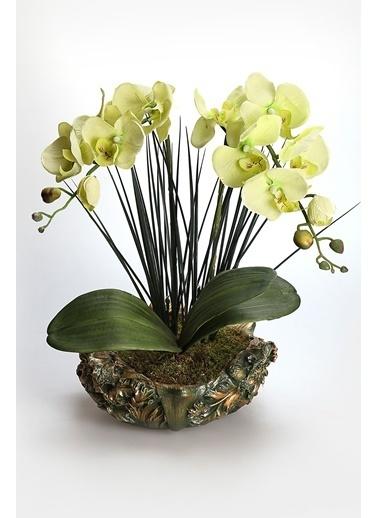 Kibrithane Çiçek Yapay Çiçek Dekoratif Saksı Yeşil Kumaş Orkide Kc00200820 Renkli